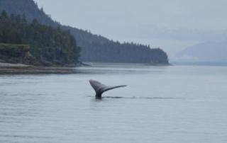 RTW2012 - Juneau